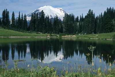Mt. Rainer and Tipsoo Lake